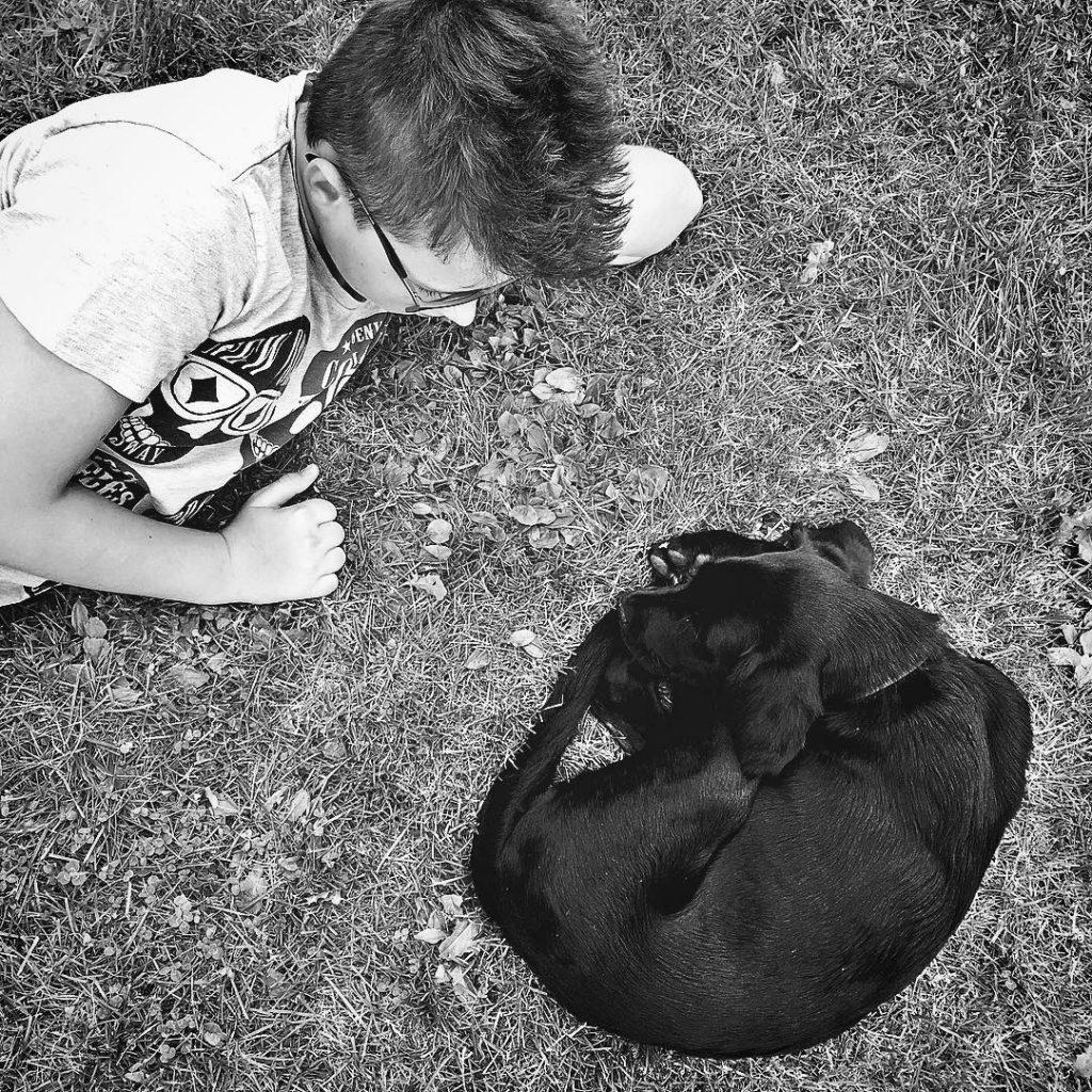 love unserleihhund